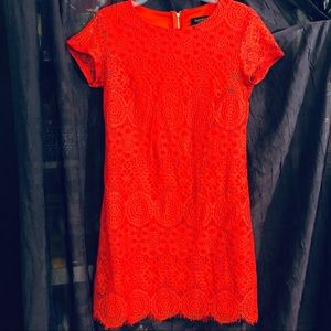 Laundry Sz 6P Red Lace  Dress